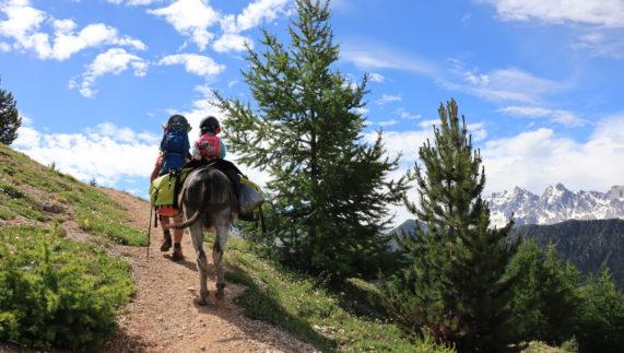 Randonnée en famille itinérante avec un âne de 5 jours dans le Queyras en autonomie